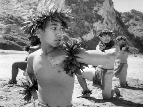 American Aloha Trailer