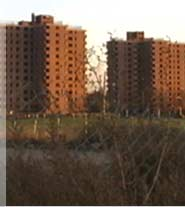 A public housing project in Newark before its demolition.