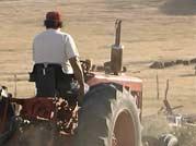 Alex driving a tractor