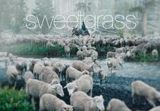 Sweetgrass Trailer
