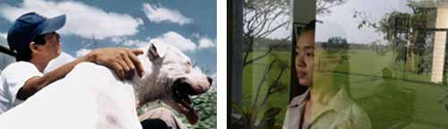 Stills from Lisandro Alonso's La libertad and Apichatpong Weerasethakul's Syndromes and a Century